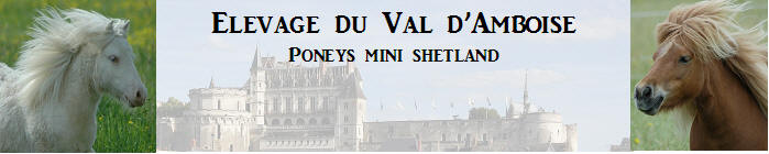 elevageduvaldamboise.fr